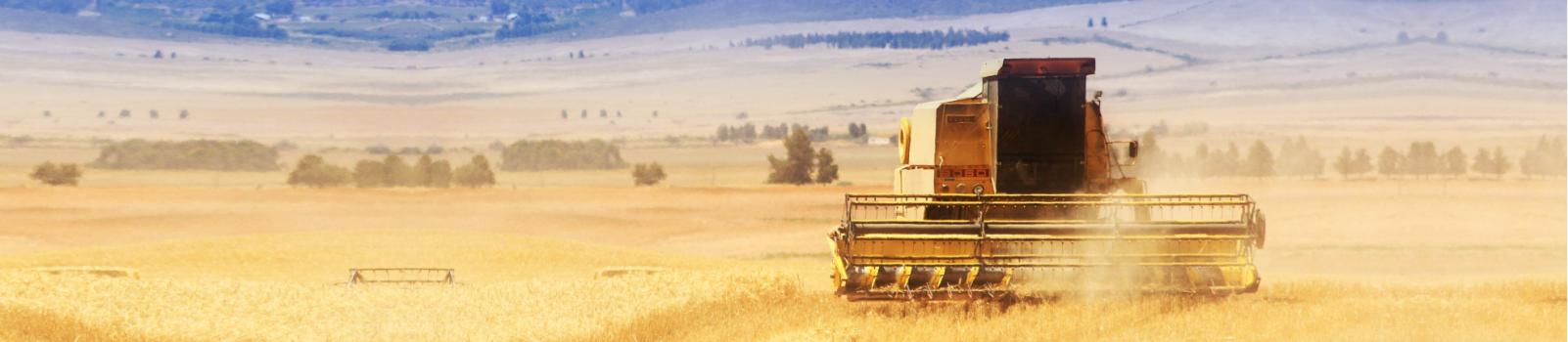 Harvester Delportshoop Delportshoop